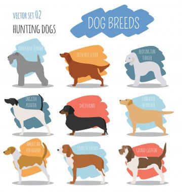 Dog breeds. Hunting dog set icon. Flat style