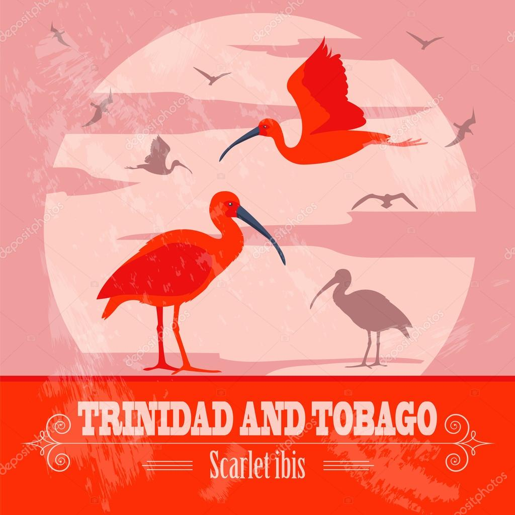 Trinidad and tobago national symbols scarlet red ibis retro trinidad and tobago national symbols scarlet red ibis retro styled image vector illustration vector by a7880s buycottarizona Choice Image