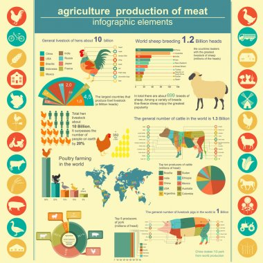 Agriculture, animal husbandry infographics