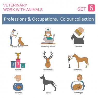 Professions and occupations coloured icon set. Veterinary, work