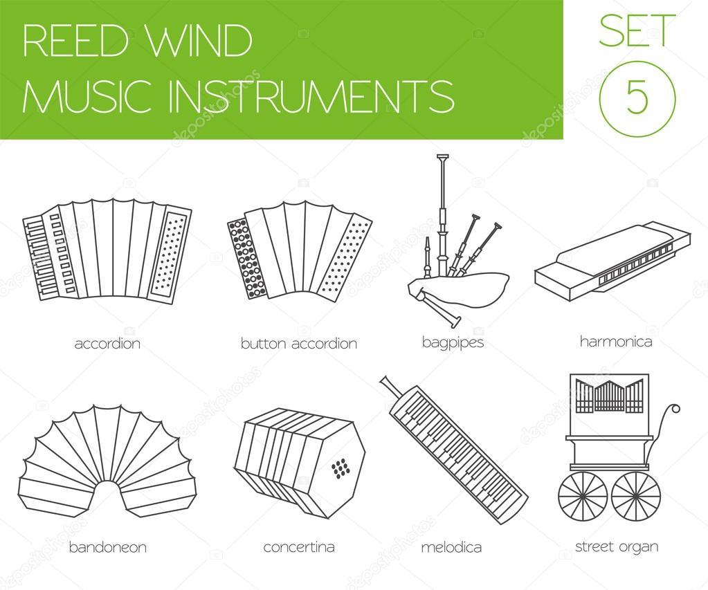 Plantilla gráfico de instrumentos musicales. Viento de caña — Vector ...