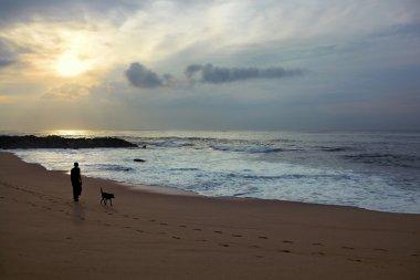 Man and dog walking along the beach