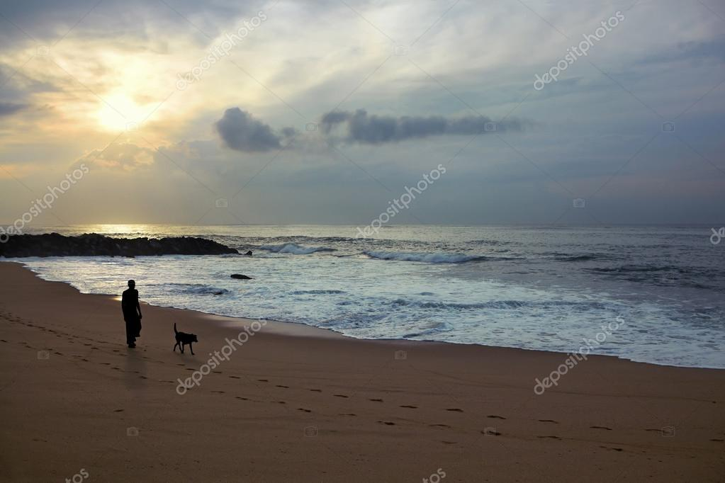 Man and dog walking along the beach