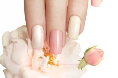Pastel manicure with rose.