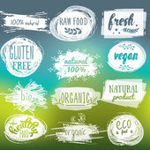 Fotografie Labels with vegetarian and raw food diet designs. Organic food tags and elements set for meal and drink,cafe, restaurants and organic products packaging.Vector illustrated bio detox logo.