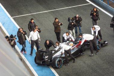 Fernando Alonso 2015