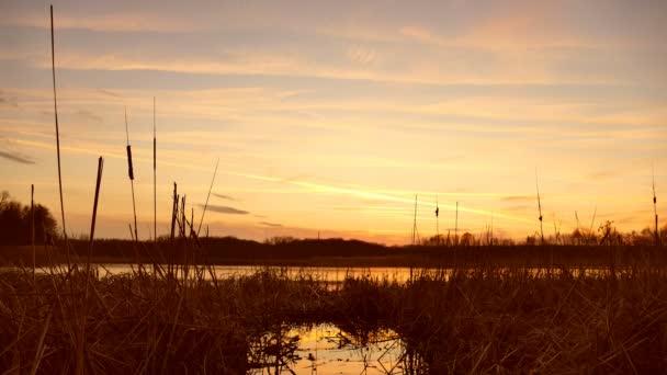 Čas západu slunce propadá říční vody travní slunce charakter krajiny