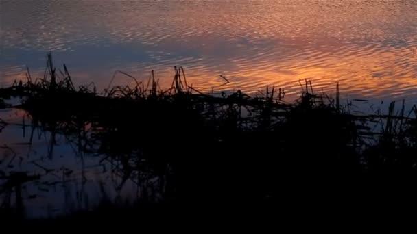 Fluss schöne Himmel Sonnenuntergang Kontur Naturlandschaft