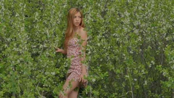 dívka v krátkých šatech uprostřed kvetoucí Trnka