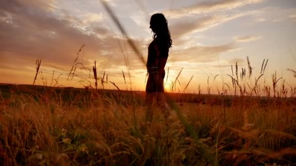 girl is in the field at sunset nature sun vacation slow motion video