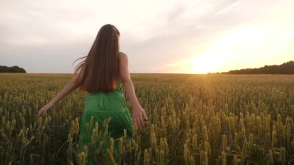 volná dívka běží přes pšeničné pole v parku. Zemědělství děti snít koncept. Dívka farmář ruce na stranu běží přes pšeničné pole. šťastný volný dívka zábava běh v parku zemědělské půdy