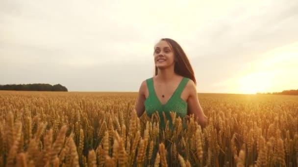 volná dívka běží přes pšeničné pole v parku. Zemědělství děti snít koncept. dívka zábava farmář ruce na stranu běží přes pšeničné pole. šťastný volný dívka běh v parku zemědělské půdy
