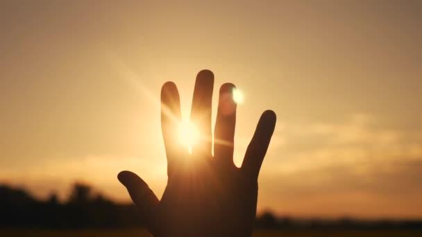 A lány kinyújtja a kezét a napon. hit Istenben álom vallási fogalom. kéz napfény a napon közelkép sziluett álom a boldogság