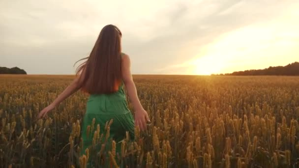 free girl run across the wheat field in the park. agriculture kid children dream concept. girl farmer hands to sides runs across the wheat field. happy free fun girl run in park agricultural land