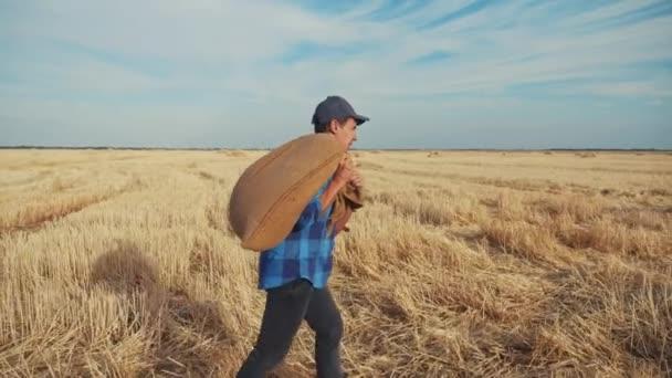 zemědělství. muž farmář s pytlem obilí procházka podél pšeničného pole pšenice trávy. zemědělská dělnická farma odchází domů s pytlem obilných pytlů sklizně obilí a pšeničným polem zemědělství