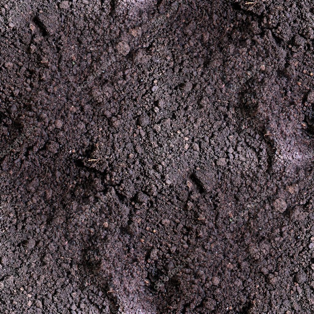 Dirt Seamless Texture Soil Land Texture Terra Background Stock Photo C Maxximmm1 63461025