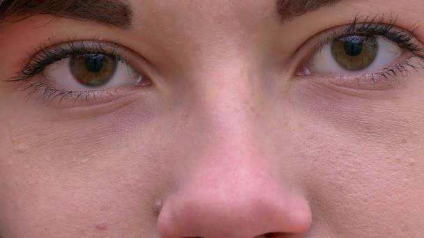 tvář žena dívka otevřené hnědé oko zoom