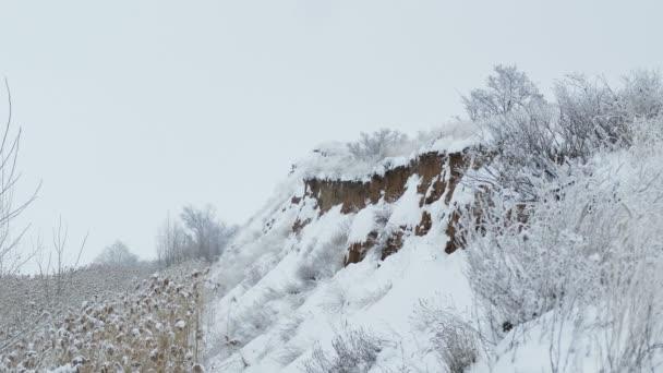 Cliff rokle dolní části přírody bažinatém rákosí zimní sníh
