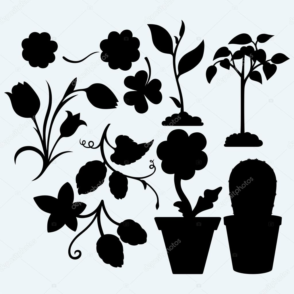 Set plants. Vector