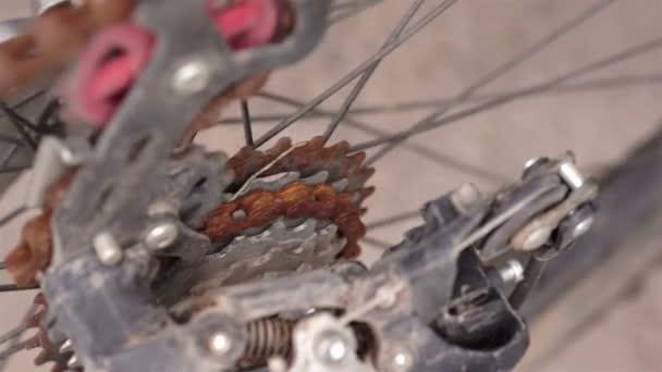 Stanovení Rusty ozubené kolo