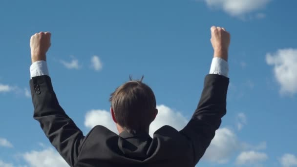 Male Businessman Back Raising Victory Arms