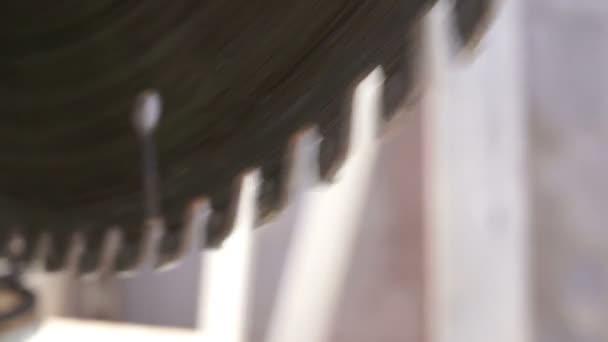 Pokosová pila radiální nože zuby makro boční pohled