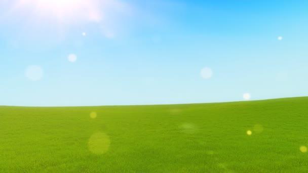 Zelené kopce v slunečný den
