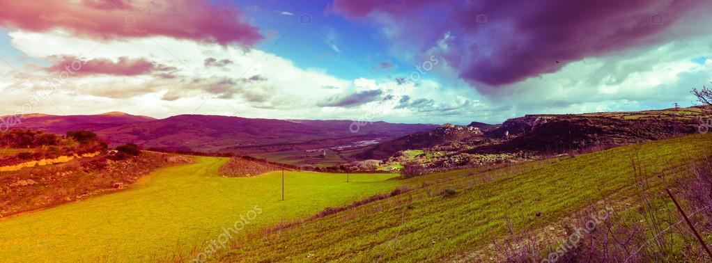 Panoramic filtered view