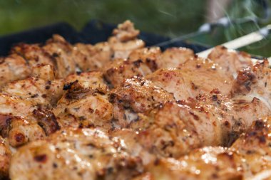 Appetizing meat on skewers. Barbecue camping dinner.