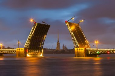 Palace Bridge with Peter and Paul Fortress -  St. Petersburg Wh