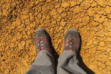 Feet in sneakers on the background of cracked earth.