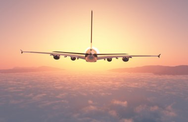 Passenger plane 3d.