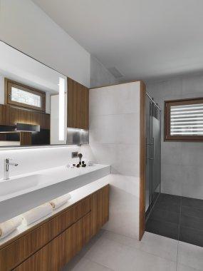 foreground of Vanity basin in a modern bathroom