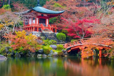 Autumn Temple in Japan