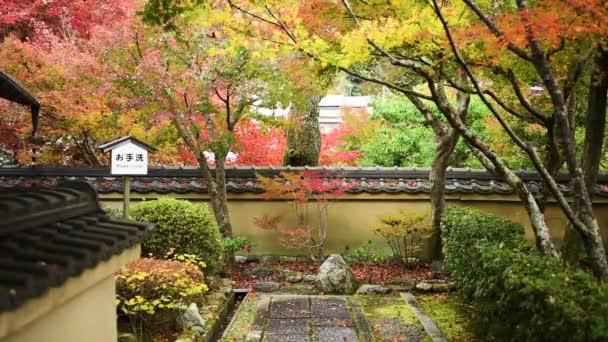 Podzimní listí v Kjótu
