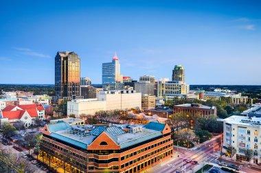 Raleigh, North Carolina Downtown Skyline