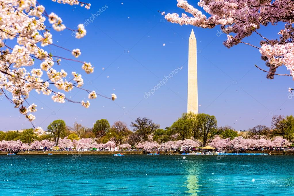Washington DC at the Tidal Basin