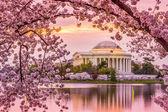 Jefferson památník na jaře