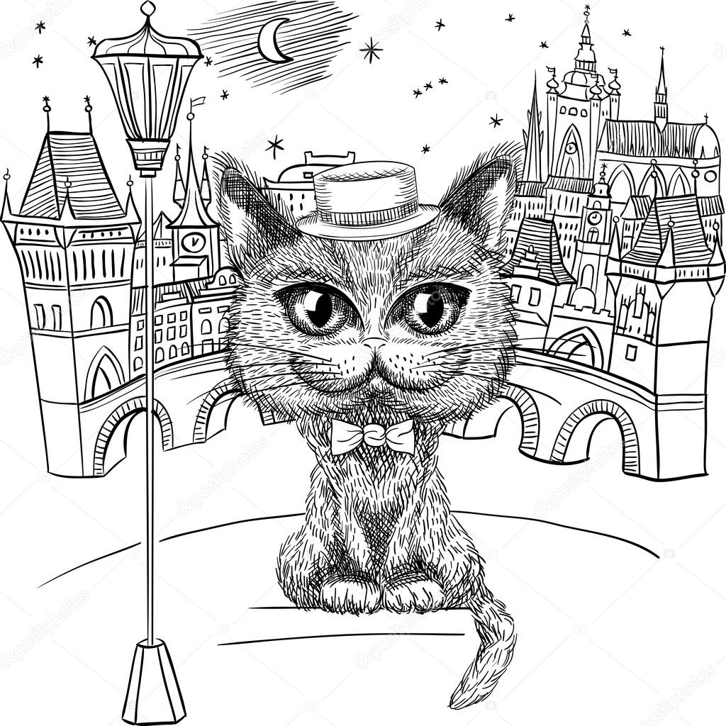 Cat in Prague, Prague Castle and Charles Bridge