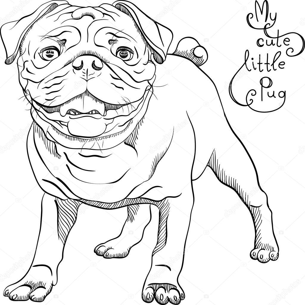 Vector dibujo lindo perro pug negro raza — Archivo Imágenes ...