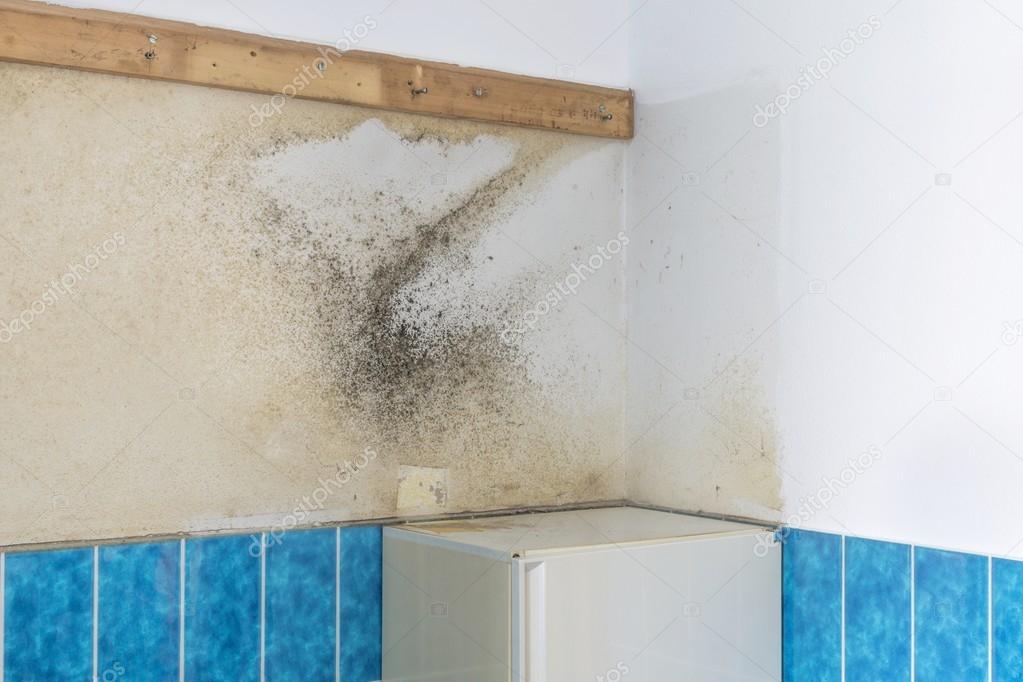 Eine Badezimmer-Wand bedeckt mit aufsteigende Feuchtigkeit ...