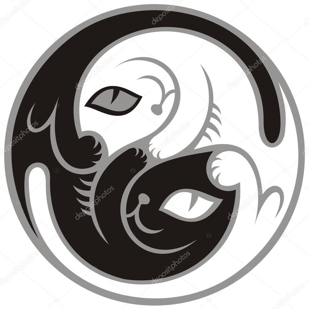 Gatos Blanco Y Negro Como Símbolo Del Yin Y El Yang Archivo