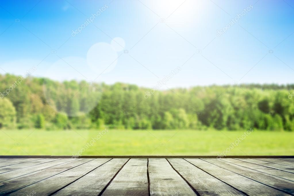 Green field under blue sky. Wood planks floor