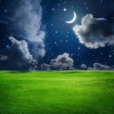 Green field under night sky with moon and stars. Beauty nature background stock vector