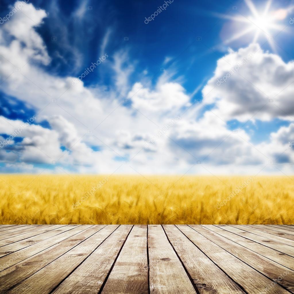 Wood floor over yellow wheat field