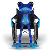 Frog in wheelchair