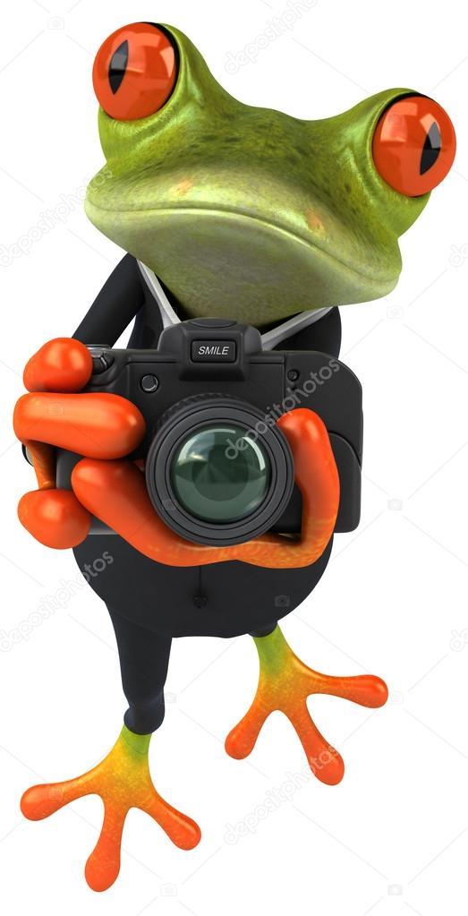 lustige frosch mit kamera stockfoto julos 78011716. Black Bedroom Furniture Sets. Home Design Ideas