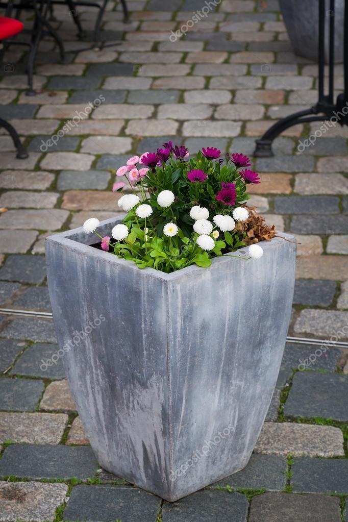 Grote Potplanten Voor Buiten.Grote Pot Met Planten Stockfoto C Sfinks 72150545