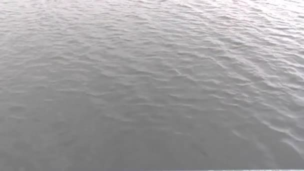 Video B59867767