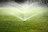 irrigatore giardino sul prato verde